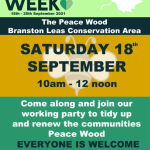 The Great Big Green Week – Peace Wood Event